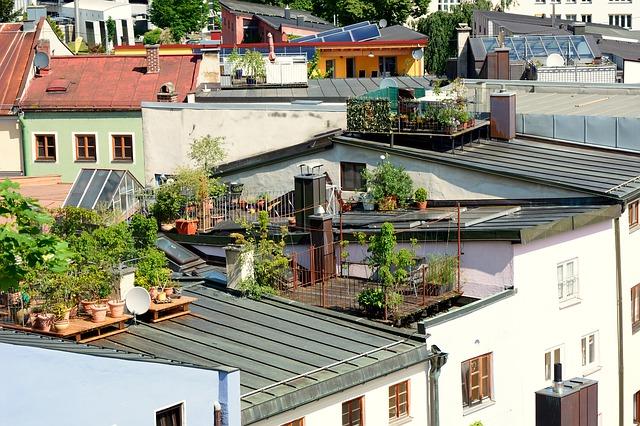 Zielone dachy iich zalety