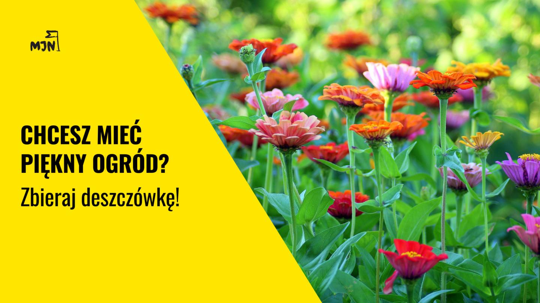 Chcesz mieć piękny ogród? Zbieraj deszczówkę!