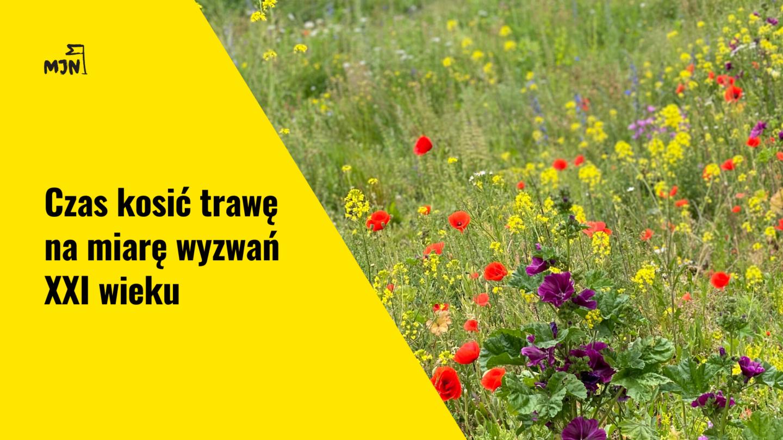 Jak kosić trawę namiarę wyzwań XXI wieku?