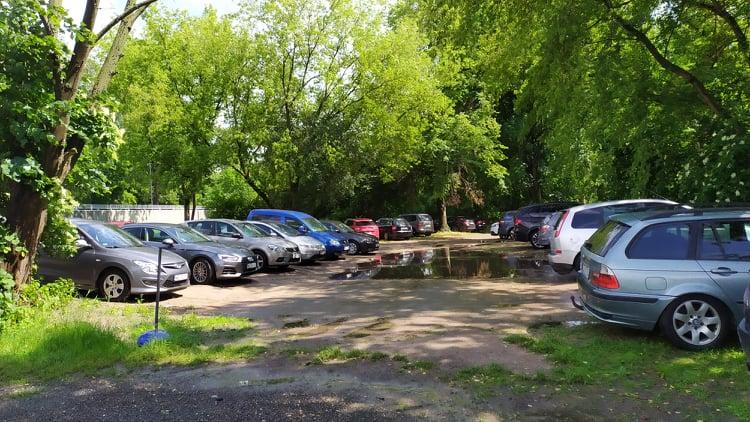 Dziki las czydzikie parkowanie?